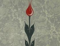 Традиционный тюльпан